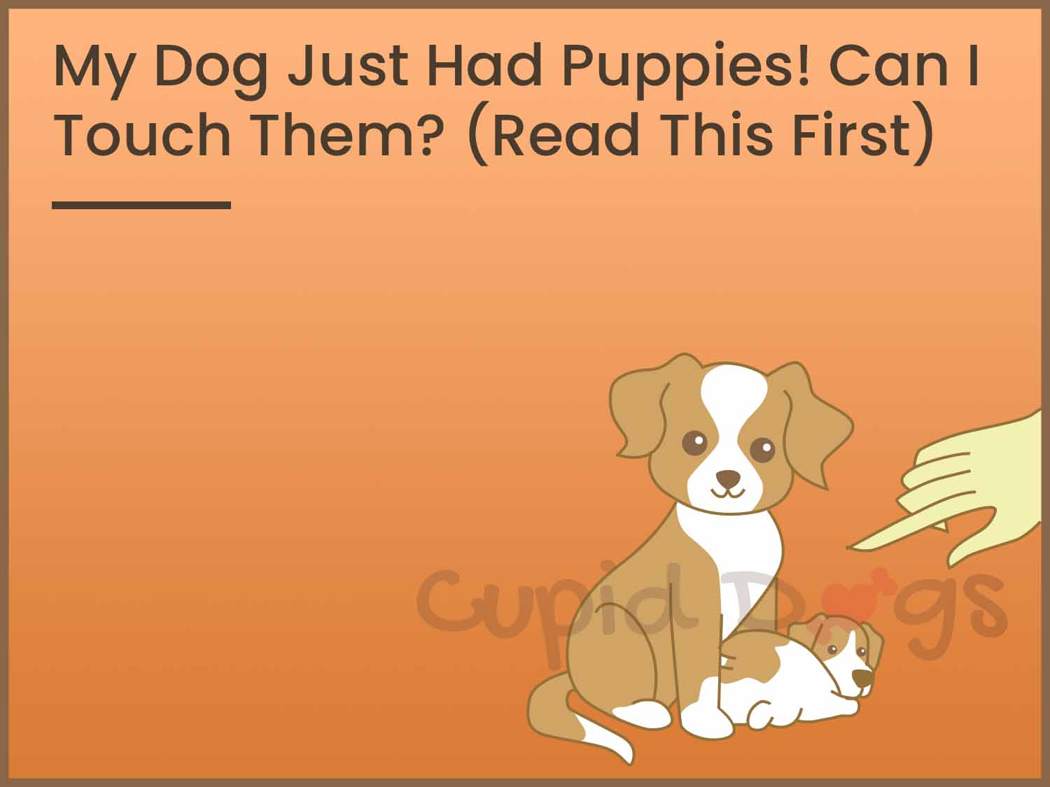 """My Dog Just Had Puppies! Can I Touch Them? (Read This First)"" is locked My Dog Just Had Puppies! Can I Touch Them?"