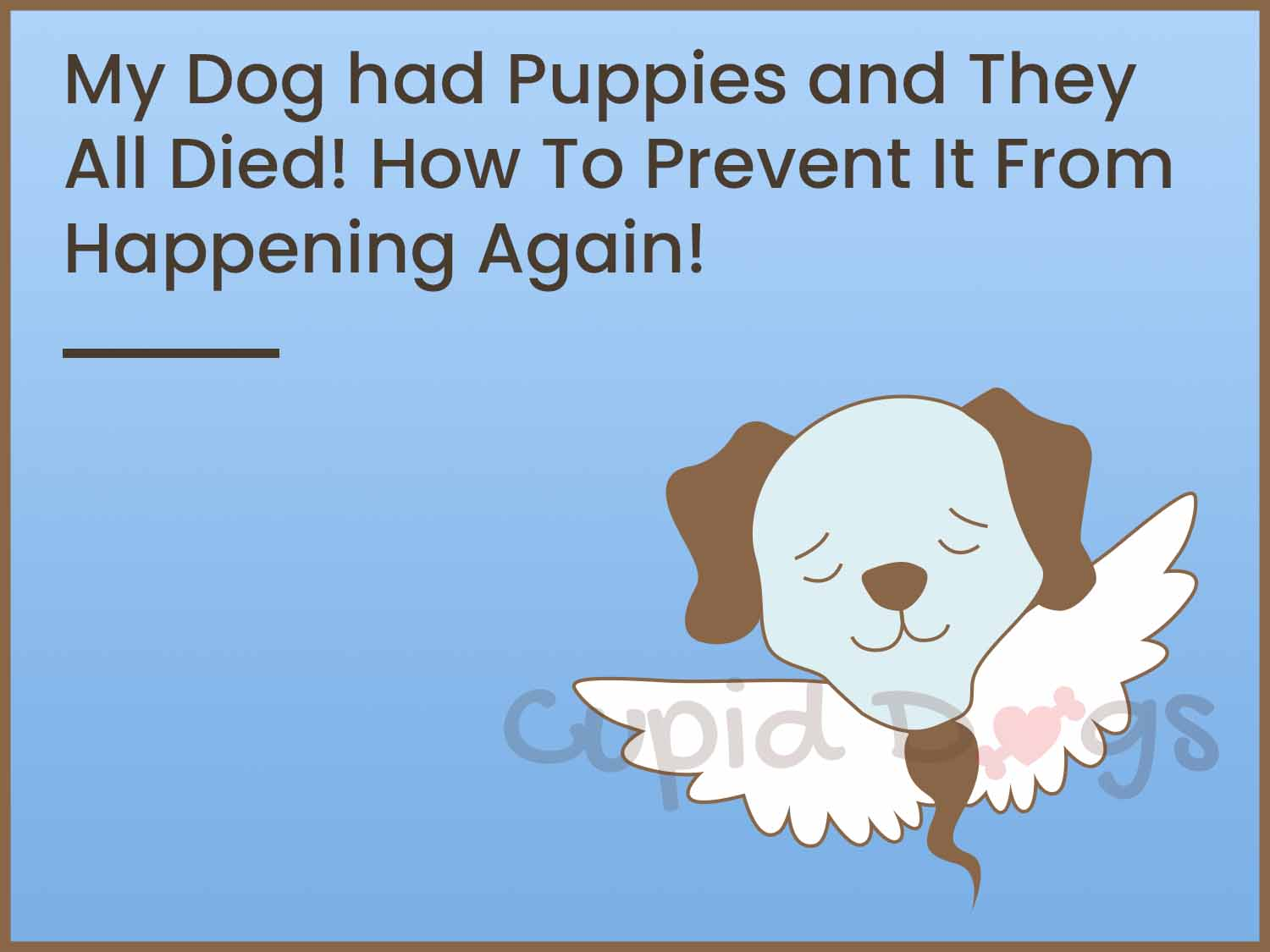 My Dog had Puppies and They All Died! How To Prevent It From Happening Again!