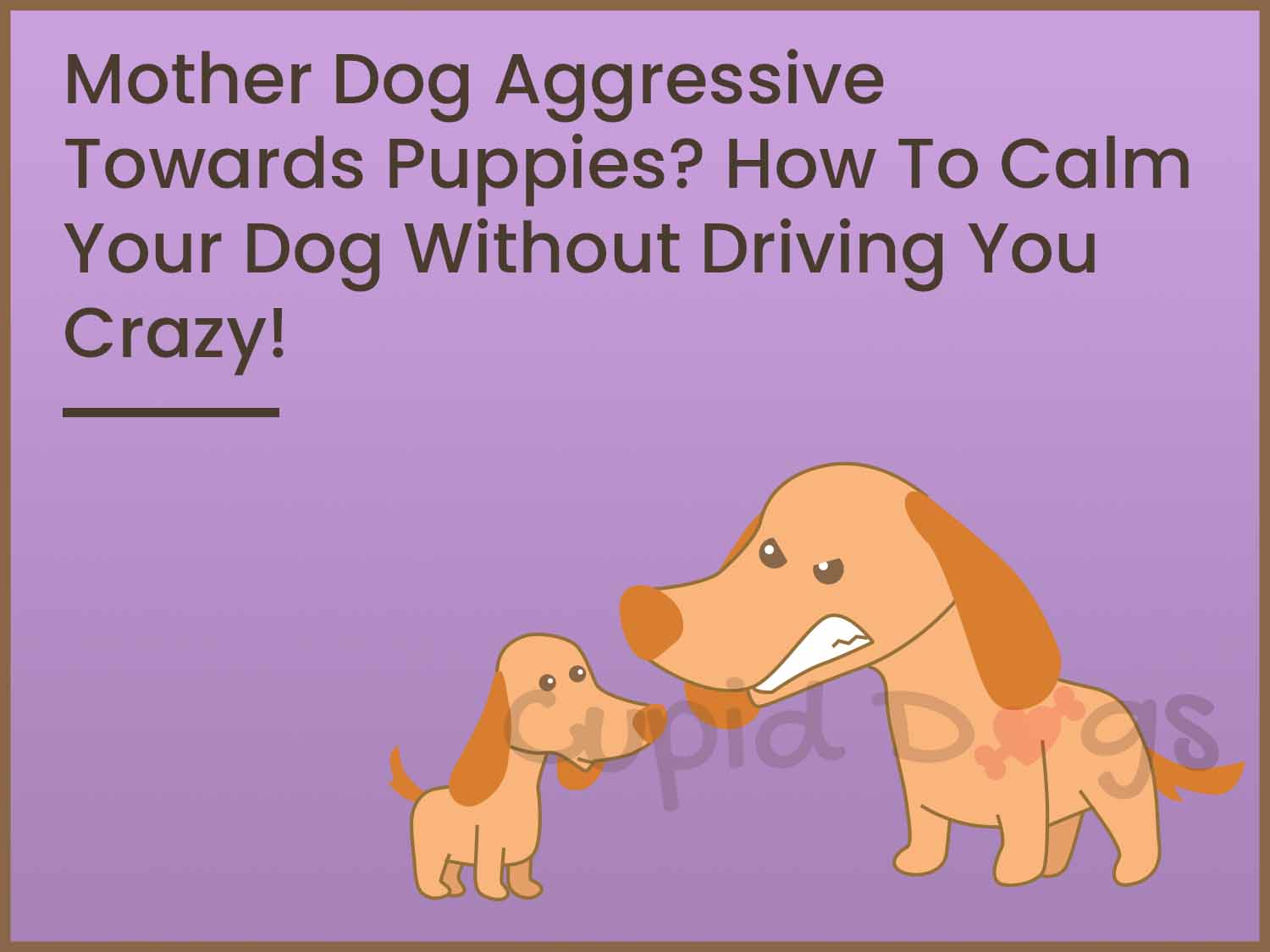 Mother Dog Aggressive Towards Puppies?