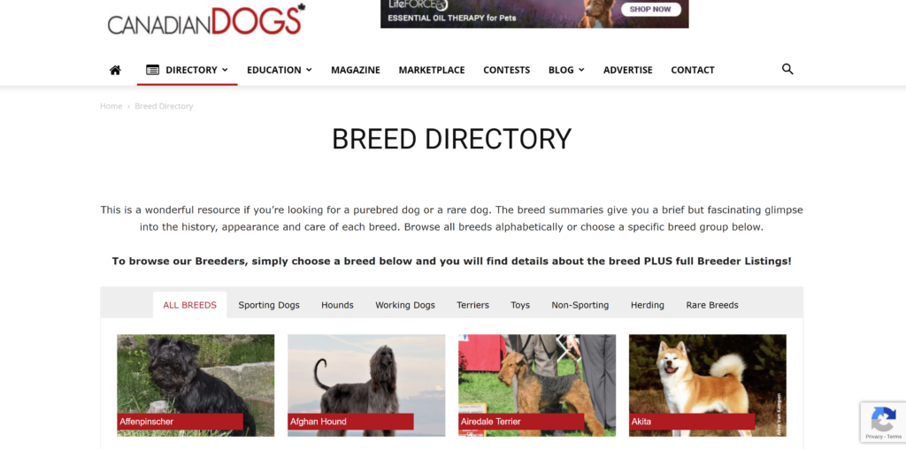 Where to advertise puppies?  Another great resource for Canadian breeders, I recommend checking it out even if you don't live in Canada.
