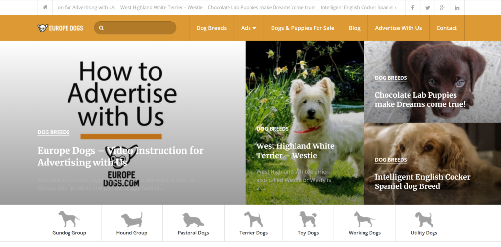 Where to advertise puppies?  Europe Dogs is more than just puppies, it is a great place to advertise any dog business.