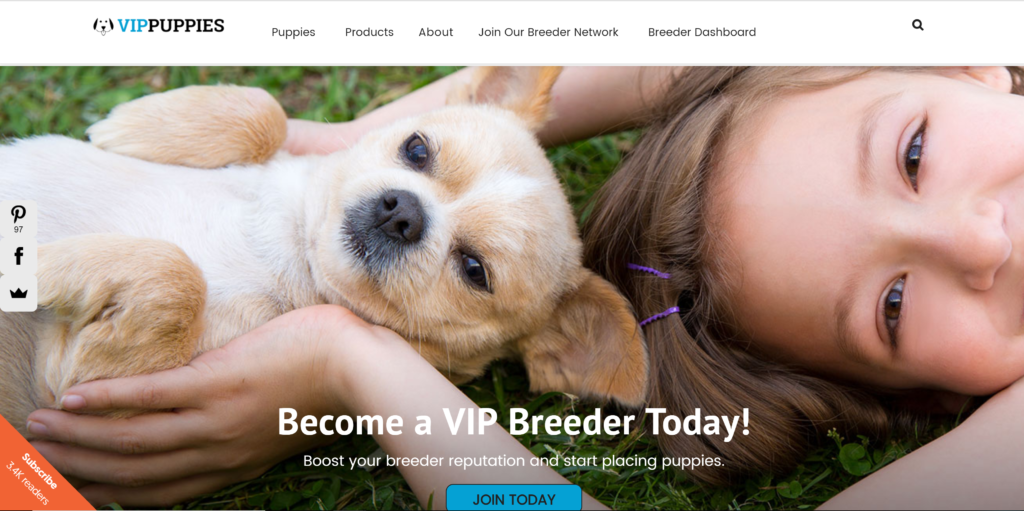 Where to advertise puppies?  VIP Pets is one of many emerging puppy sale sites offering breeder packages to promote their litters.