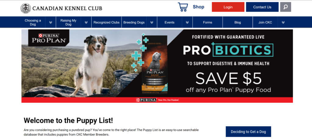 Where to advertise puppies? CKC puppy list is one of the top Canadian puppy sales sites