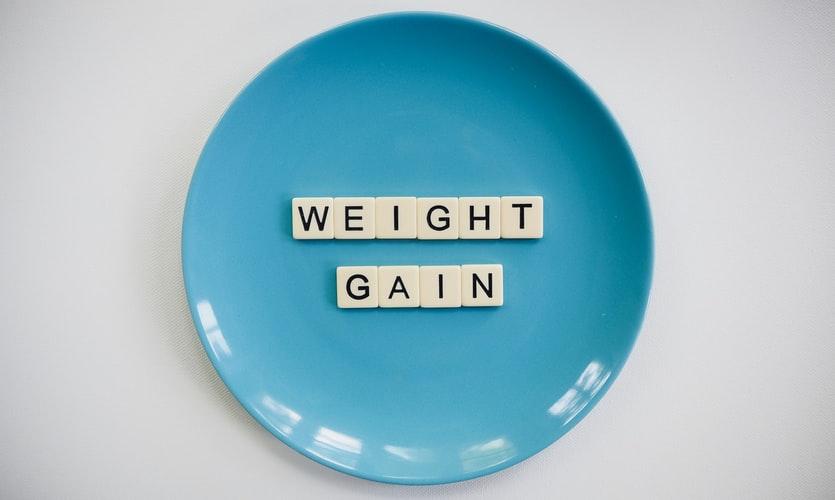 Dog weight gain